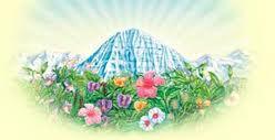 """Ayurveda significa """"la ciencia de la vida"""" y proviene de la antigua tradición Védica de la India, donde ha sido practicado por más de 5.000 mil años. Siglos de mal uso condujo a la decadencia del Ayurveda; hasta que en 1980, Maharishi Mahesh Yogi, fundador de la Meditación Trascendental, reunió a los mayores exponentes del Ayurveda, para avivar este antiguo conocimiento en su totalidad y en su pureza original. El Ayurveda Maharishi es el Ayurveda completo, de acuerdo con los textos clásicos."""