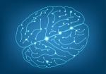 Meditación, Coherencia, Inteligencia